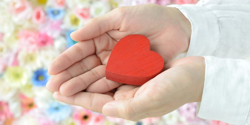 Heart object held by female hands