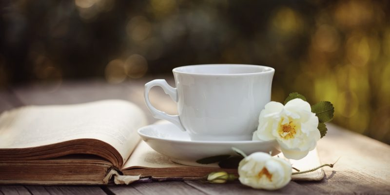 White cup with a flowers of wild rose on an open old book on a wooden table.